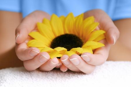 sunflowerhands